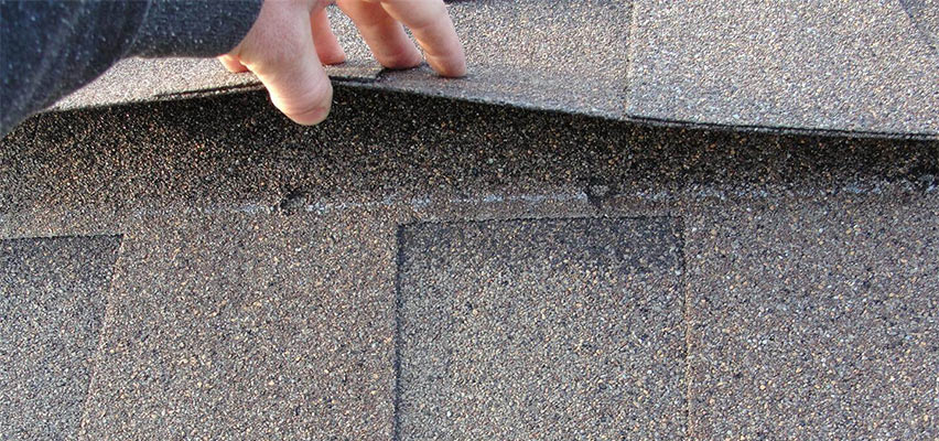 shingle roof check up